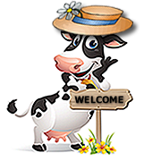 Cow Welcome 2